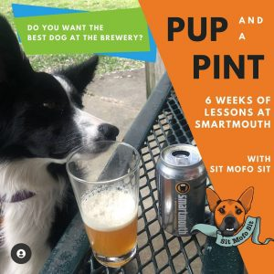dog with a smartmouth beer